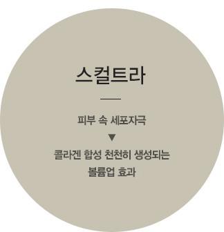 필러,강남필러,압구정필러,압구정엘란쎄,강남엘란쎄,엘란쎄,압구정피부과,위드윈피부과